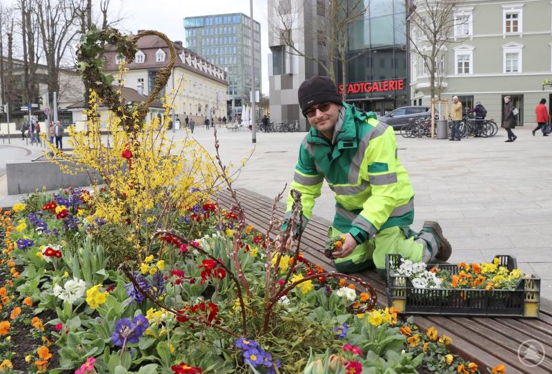 Chrysanth Fischer von der Stadtgärtnerei gestaltet die Bepflanzung am Ludwigsplatz.