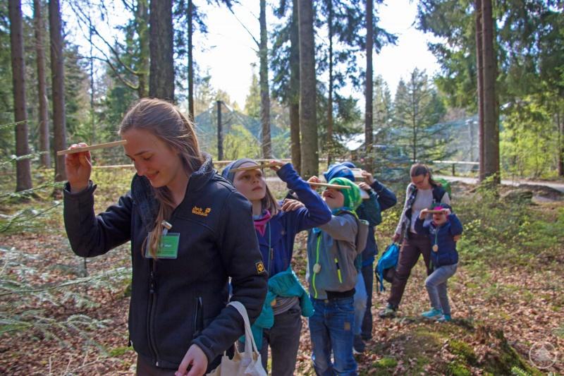 Mit verschiedenen Aktionen können Kinder im Rahmen des Ferienprogramms den Wald entdecken, wie zum Beispiel mit einem Spiegelgang.