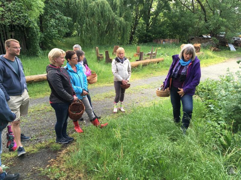 Die Wildkräuter wachsen vor der eigenen Haustüre:  Margarete Vogl (rechts) und die Workshopteilnehmer im Rahmen der Biowoche der Ökomodellregion Ilzer Land.