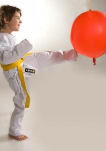 Karate | Mo, 19.01.2015 von 19:00 bis 20:00 Uhr
