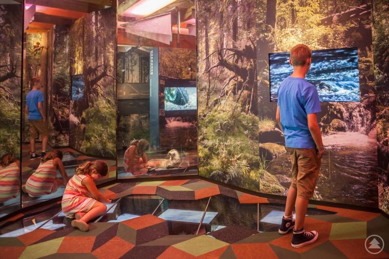 Nicht nur Kinder finden auch in der Nebensaison auf einer Entdeckertour durch die Ausstellung des Waldgeschichtlichen Museums viele spannende Geschichten.