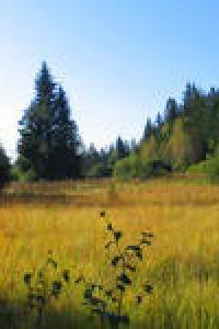 Eine Landschaft erzählt ihre Geschichte | Mo, 25.08.2014 von 13:00 bis 17:00 Uhr