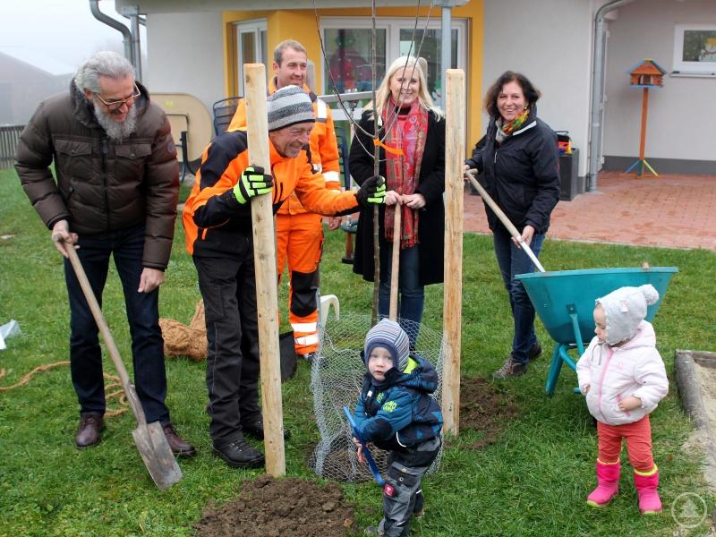 Sie pflanzten mit den Kindern einen Baum (v.li.) Kreisgartenfachberater Klaus Eder, der Kollnburger Gartenbauvereinsvorsitzender Helmut Stoksa, Stefan Wilhelm (Bauhof Kollnburg), Bürgermeisterin Josefa Schmid und Brigitte Blaim.