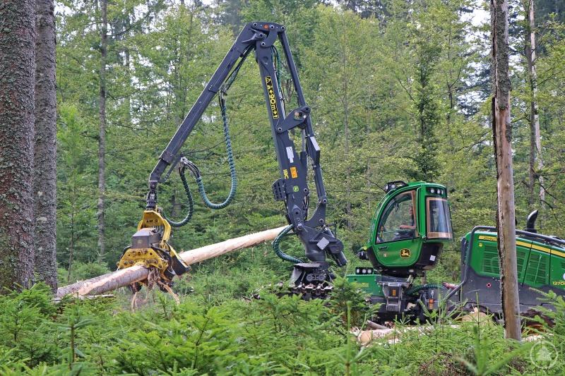 Der deutschlandweit noch nicht flächendeckend im Einsatz befindliche Debarking Harvester fällt, entastet und entrindet in einem Arbeitsschritt von Borkenkäfern befallene Fichten.
