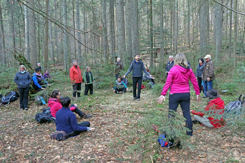 Augen zu, Ohren auf, Finger gespitzt: Mit allen Sinnen erlebten die Teilnehmer der Waldbaden- Fortbildung mit Dozent Martin Kiem (Mitte) die Natur um sich herum.
