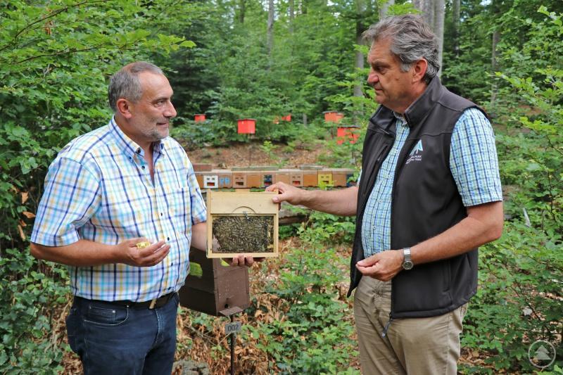 Mit kleinen Zuchtkästen sorgt Franz Rothkopf (links) dafür, dass junge Königinnen aufwachsen, wie er Nationalparkleiter Franz Leibl erklärt.