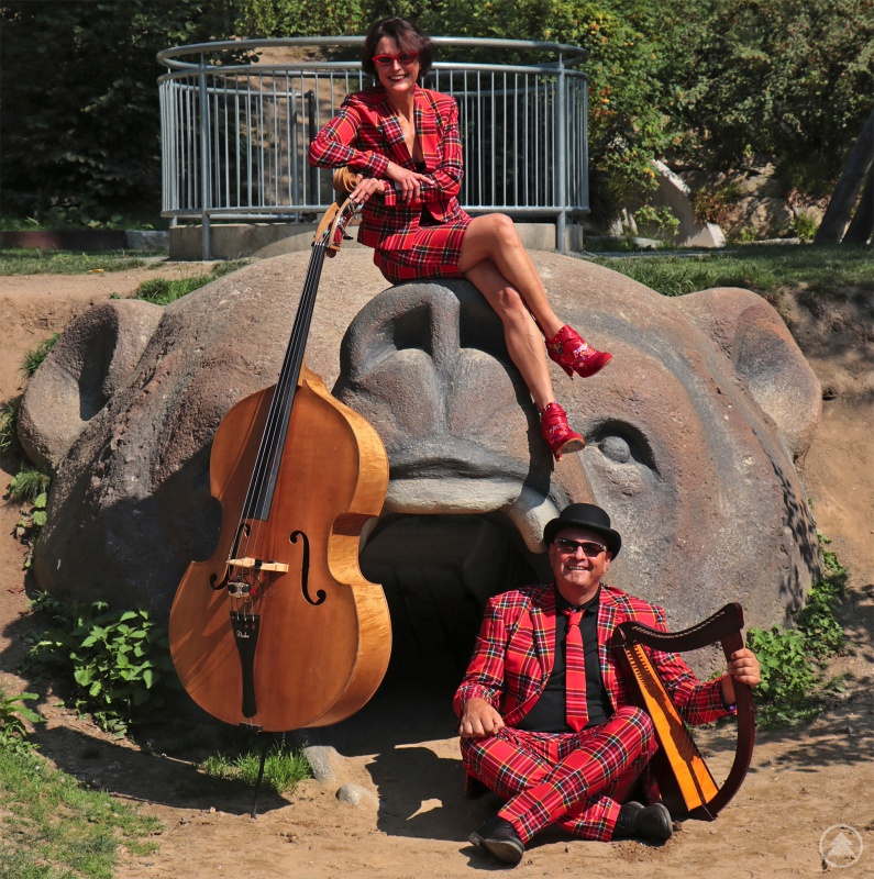 """""""VEBO"""" wird bei der Online-Vernissage mit Harfe und Kontrabass die Waldsinfonie """"Woidbuidl"""" aufführen."""