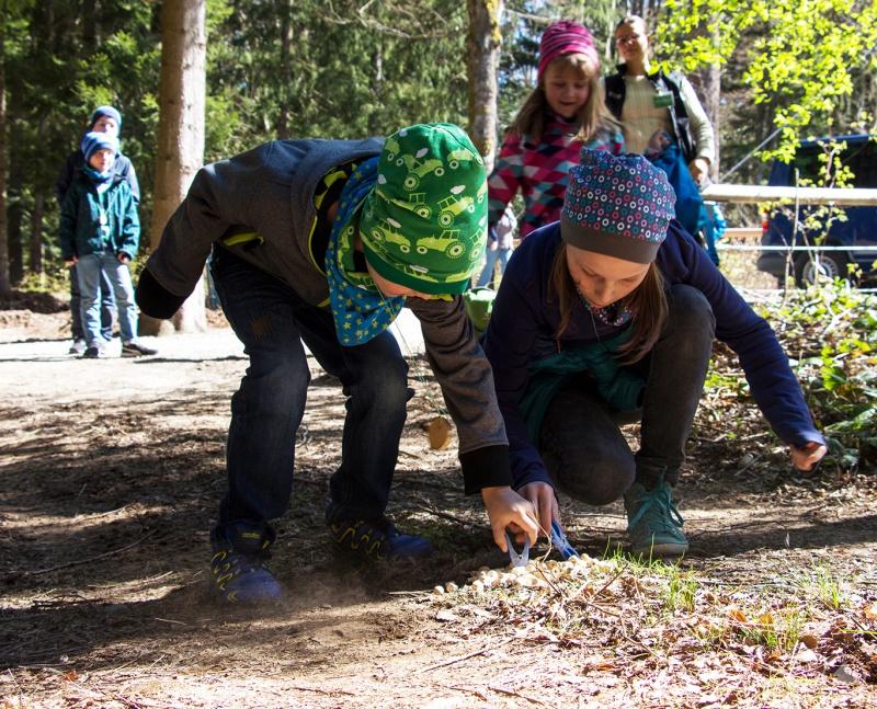 """Bei den Erlebnisnachmittagen heißt es """"Auf in die Wildnis"""". Neben dem Entdecken der Natur stehen verschiedene Spiele auf dem Programm."""