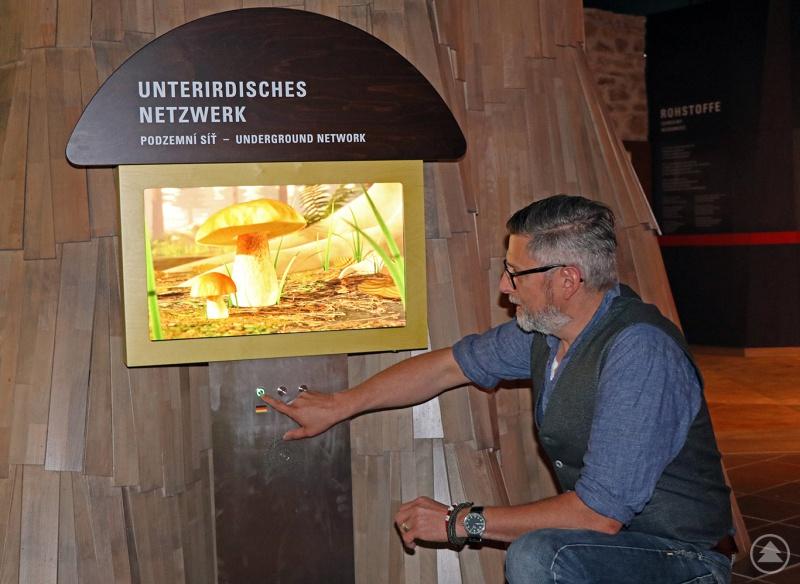 Christian Binder zeigt die neue Installation im Waldgeschichtlichen Museum.