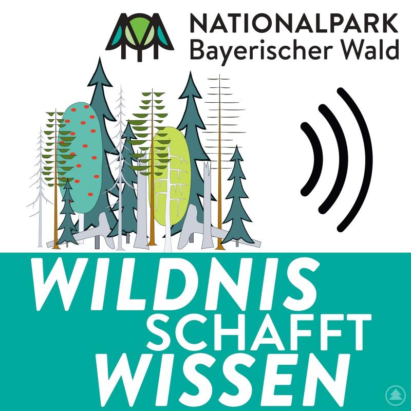"""Das Logo zum neuen Format """"Wildnis schafft Wissen""""."""