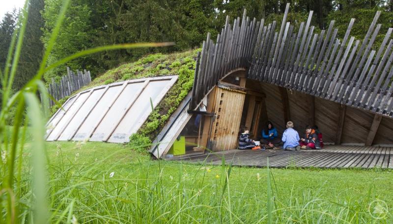 Neben dem 1974 eröffnetem Jugendwaldheim betreibt der Nationalpark seit 2002 auch das Wildniscamp am Falkenstein, wo vor allem Schüler der Natur ganz nah kommen können.