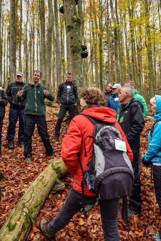 Das Wissen über den Nationalpark wurde den neuen Waldführern unter anderem bei Exkursionen im wilden Wald näher gebracht, wie hier mit Forschungsleiter Jörg Müller.