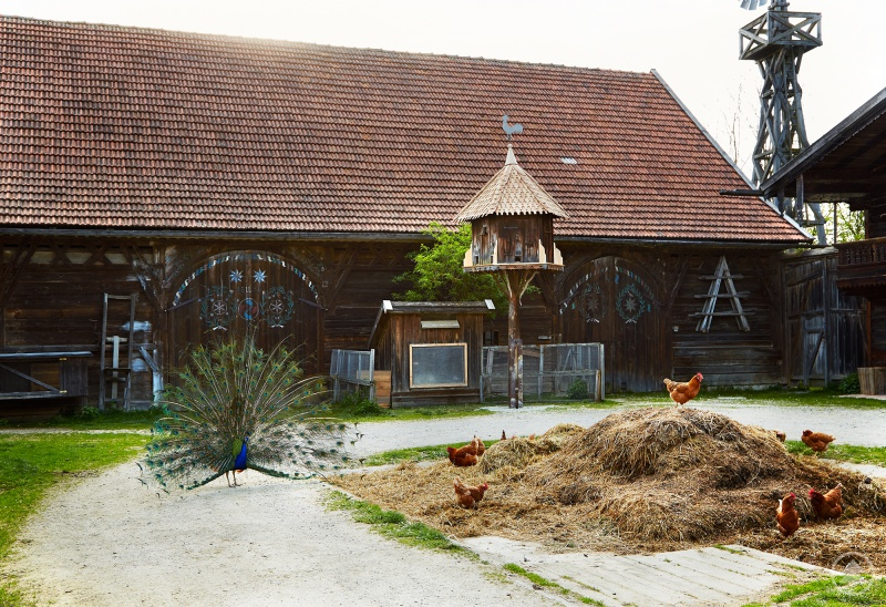 Freilichtmuseum Massing: Taubenhaus