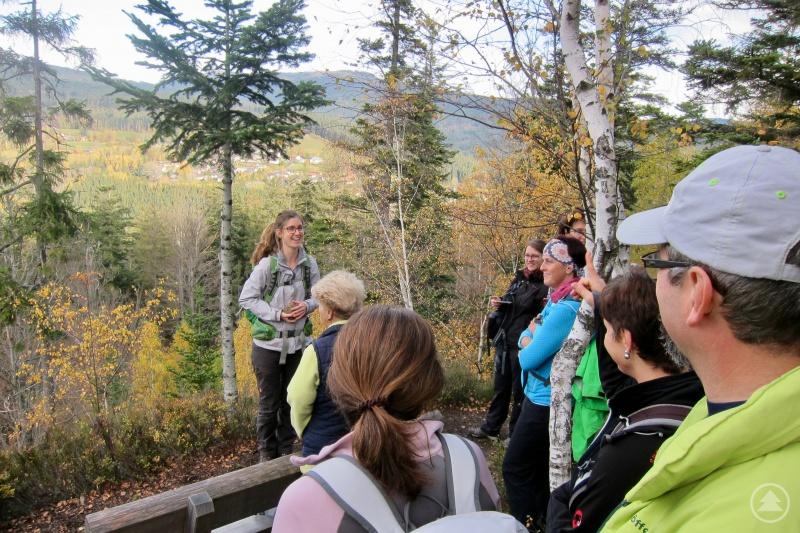 Praktische Übung: Teilnehmerin Floreana Miesen erklärt den geologischen Bau des Bayerischen Waldes.