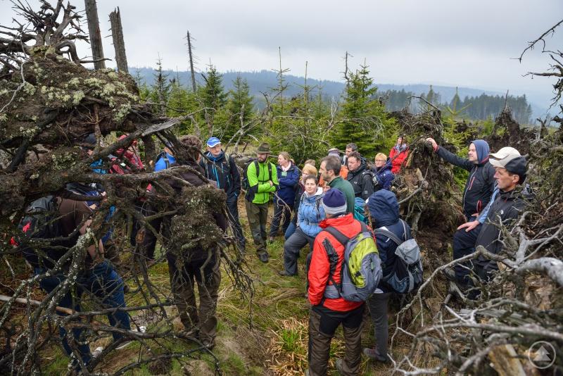 Viele Exkursionen – geleitet von Mitarbeitern des Nationalparks Bayerischer Wald - stehen bei der Ausbildung zum Waldführer auf dem Programm.