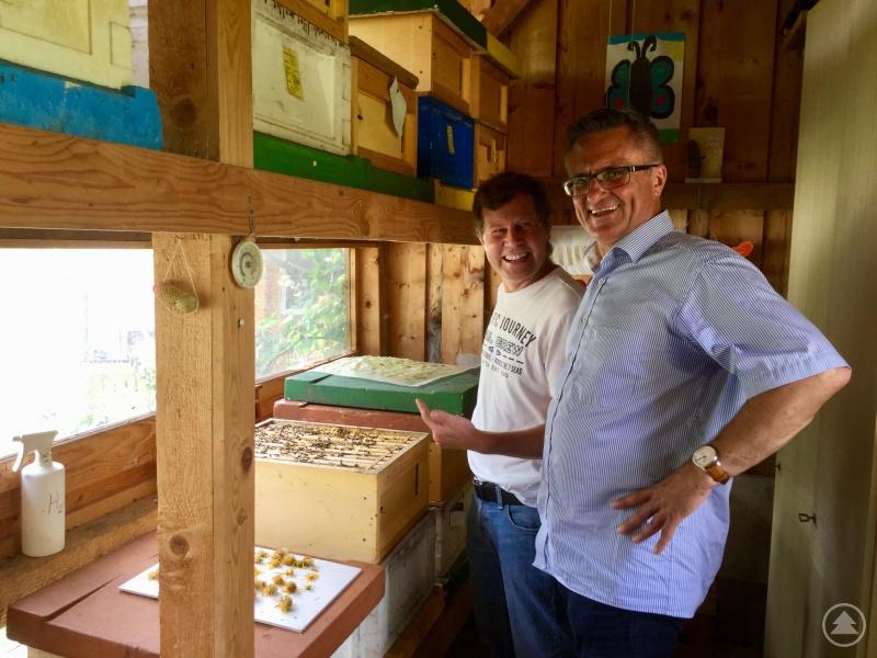 Bienen sind Gemeinschafts-Wesen: In einem Kasten leben 35 000 bis 40 000 von ihnen, eine Königin und 500 Drohnen. Thomas Reihofer vertraut auf sein friedfertiges Carnica-Volk. Die stechen nicht, versichert er Alexander Muthmann.