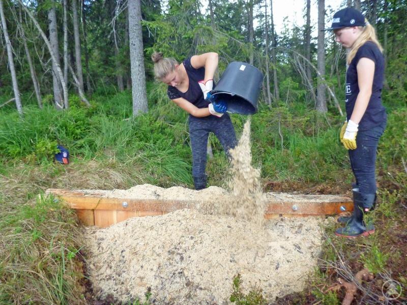 Nahe der tschechischen Grenze halfen die Jugendlichen bei der Renaturierung eines einst trocken gelegten Moores.