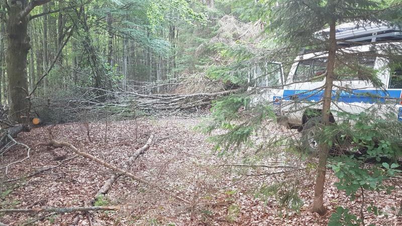 Im Weg liegende Bäume, die ein weiterkommen mit dem Bergrettungsfahrzeug unmöglich machten.