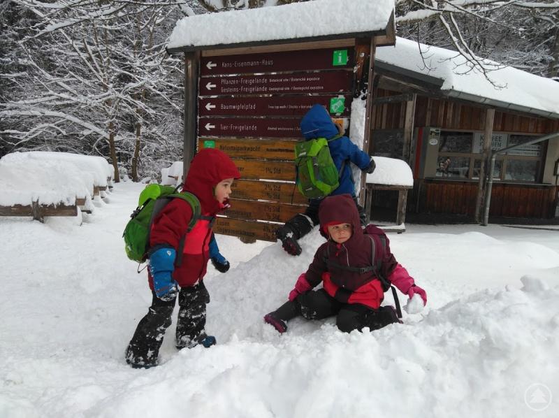 Beim Ferienprogramm des Nationalparks können Kinder Natur und Tiere im winterlichen Wald erkunden.