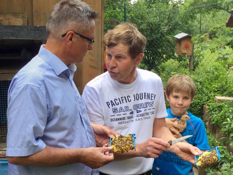 Bienen-Experte Thomas Reihofer öffnet ein Mehrwaben-Kästchen und zeigt MdL Alexander Muthmann eine Königin mit ihrem Hofstaat. Der zehnjährige Johannes teilt die Imker-Leidenschaft des Vaters.