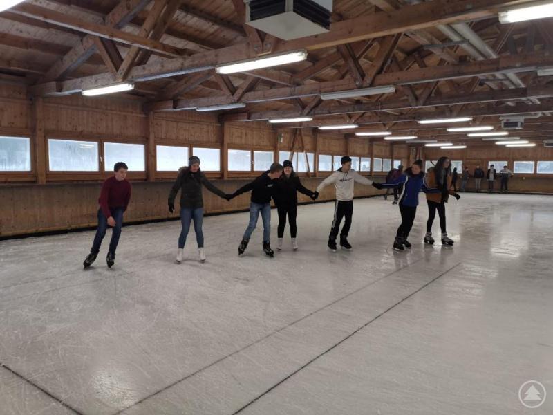 Viel Spaß hatten Austauschschüler und Freyunger Gymnasiasten beim gemeinsamen Eislaufen.