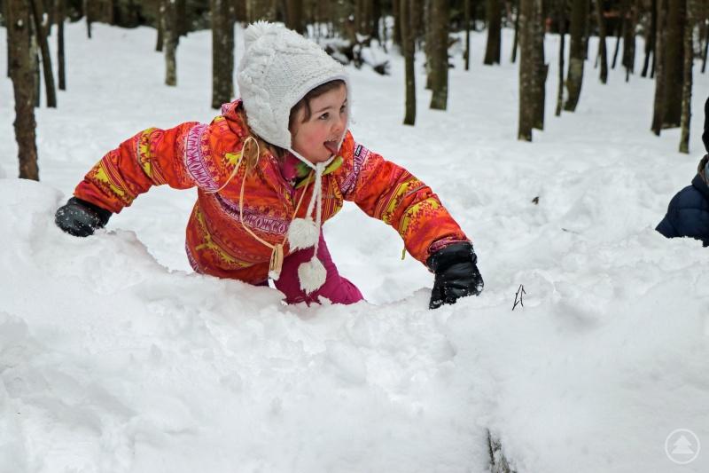 Spaß in der Natur haben und viel Neues entdecken, das verspricht das Kinderferienprogramm des Nationalparks Bayersicher Wald.