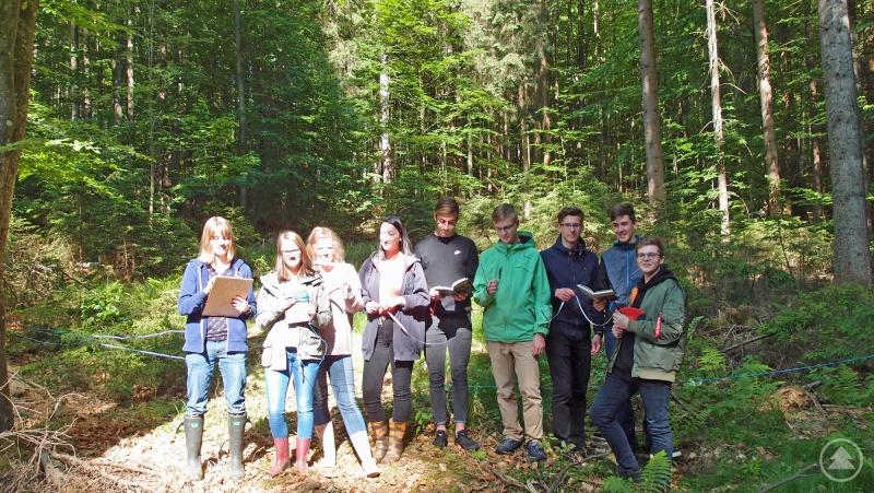 Mit Maßband und Notizblock machten sich die Zwieseler Gymnasiasten im Bereich Ludwigsthal daran, ein Waldstück einzumessen und die dort vorkommenden Pflanzenarten zu bestimmen und zu zählen.