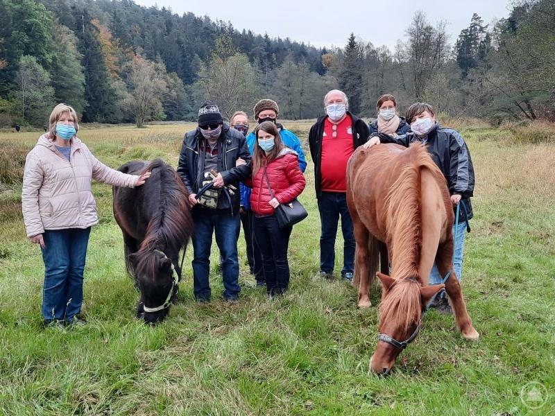 Ein langer Spaziergang mit den Pferden der Fachgebietsleitung.