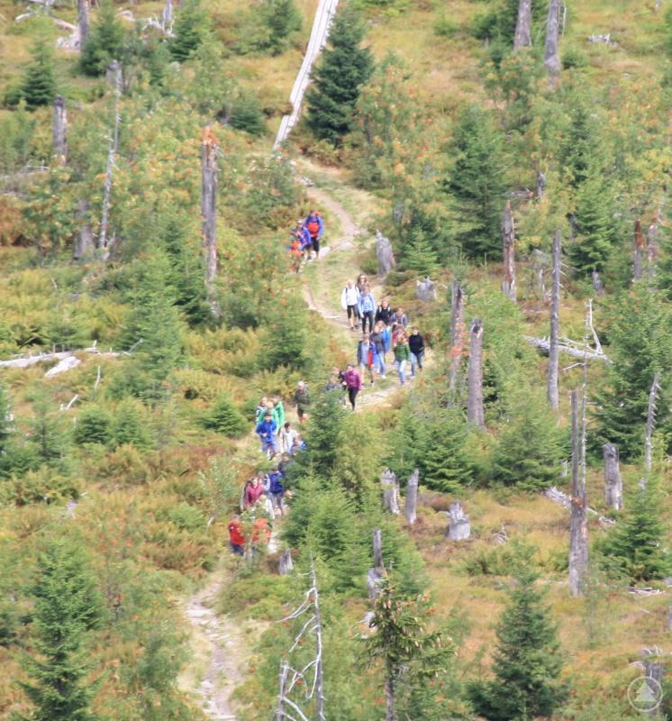 Die Gruppe macht sich an den Aufstieg zum Lusengipfel.