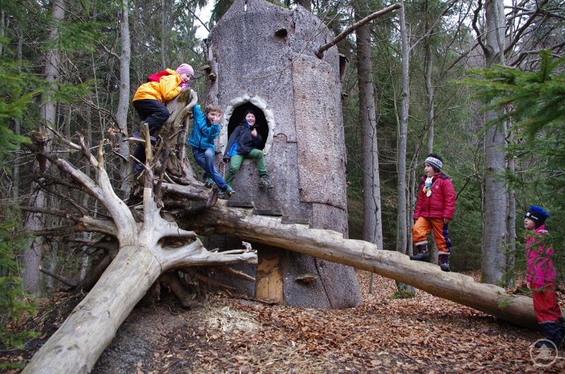 Ab sofort können Kinder das Waldspielgelände in Spiegelau wieder entdecken. Die Verkehrssicherung durch die Forstmitarbeiter der Nationalparkverwaltung ist abgeschlossen.