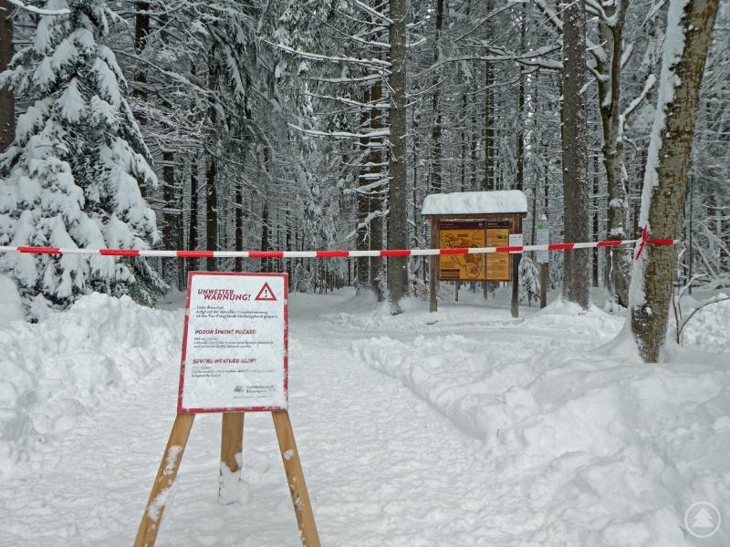 Das Tier-Freigelände in Neuschönau ist bis auf Weiteres gesperrt.
