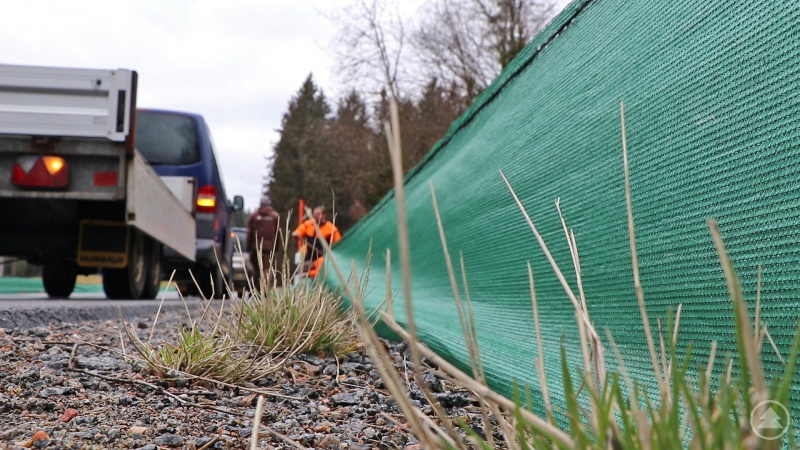 Ein 40 Zentimeter hoher Fangzaun wurde von Nationalparkmitarbeitern zwischen St. Oswald und Altschönau aufgebaut.