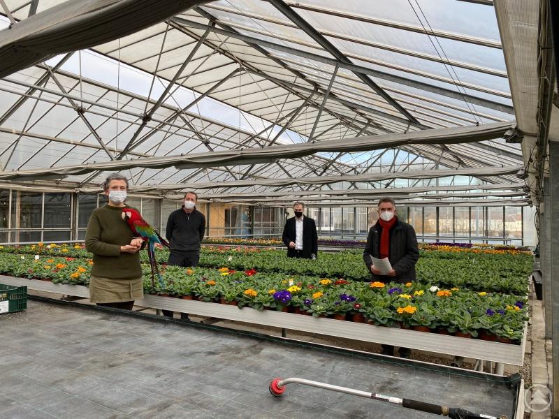(v. links n. rechts) Renate Peschl-Brummer und Christian Brummer schildern Bürgermeister Stephan Dorn und MdL Walter Taubeneder die schwierige Situation der Gärtnereien und gartenbaulichen Unternehmen angesichts der bestehenden Schließungsanordnungen.