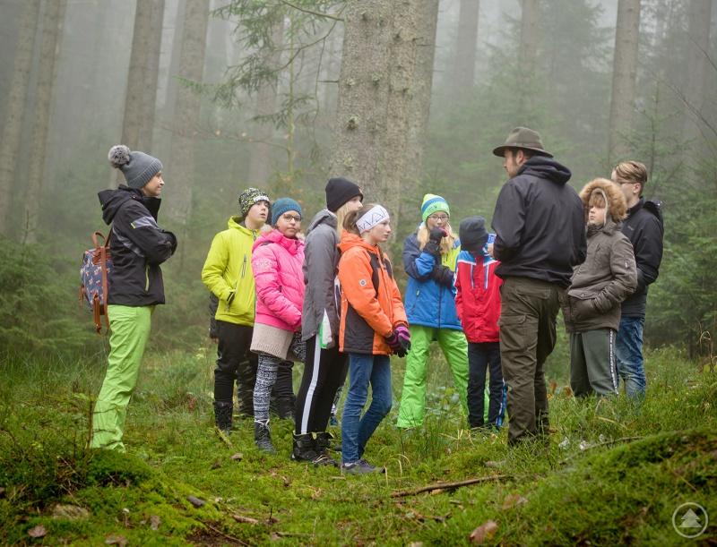 Knapp 500 Schulklassen kamen allein im vergangenen Jahr in den Nationalpark. Zum 50. Geburtstag gibt's nun eine Fotoaktion für die jungen Naturfans.