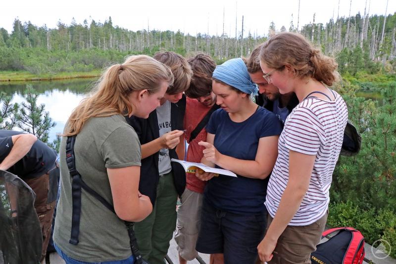 Ein Teil der Camp-Teilnehmer hat am Latschensee gerade eine Libelle gefangen. Nach Literaturrecherche ist sicher: Es ist eine Hufeisen-Azurjungfer.