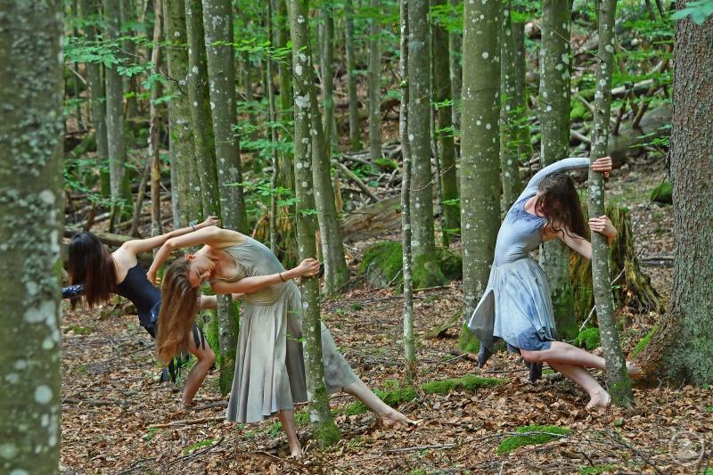 Junge Tänzerinnen und Tänzer studierten jüngst im Nationalpark Bayerischer Wald erste Choreographien für ein neues Werk zum Thema Wildnis ein.