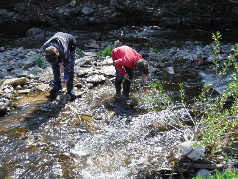 Junge Forscherinnen und Forscher im Ökosystem Saußbach.