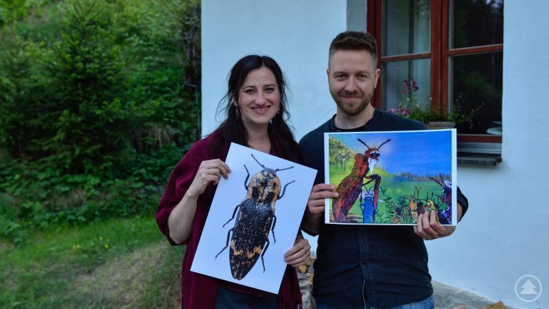 Einen außergewöhnlichen Fund machten Nationalparkmitarbeiter Thomas Michler und seine Lebensgefährtin Julia Herzig: Sie hatten den Bindigen Schnellkäfer, der 100 Jahre lang so gut wie nicht auffindbar war, in ihrer Badewanne. Links auf dem Bild ist das Original zu sehen, rechts auf dem Bild der gemalte Käfer aus dem Kinderbuch.