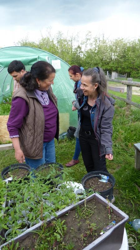 Eva Hackl von der Caritas Satu Mare (re.): Mit Gemüse aus Foliengewächshäusern sollen sich Menschen mit Behinderungen im Haus Perla selbst versorgen können. Dort stehen auch Renovierungsarbeiten an. Neue Küchenmöbel werden dringend benötigt.
