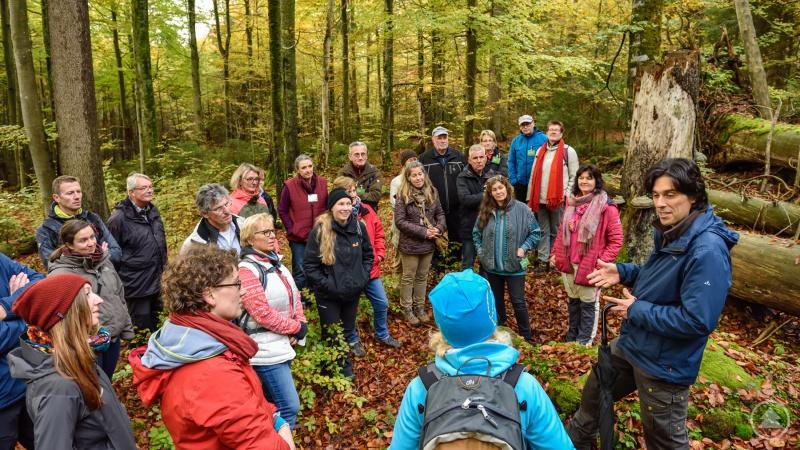 Bei regelmäßigen Fortbildungen, wie hier mit dem Nationalpark-Mykologen Claus Bässler, frischen die Waldführer ihr Wissen über die wilde Natur auf.