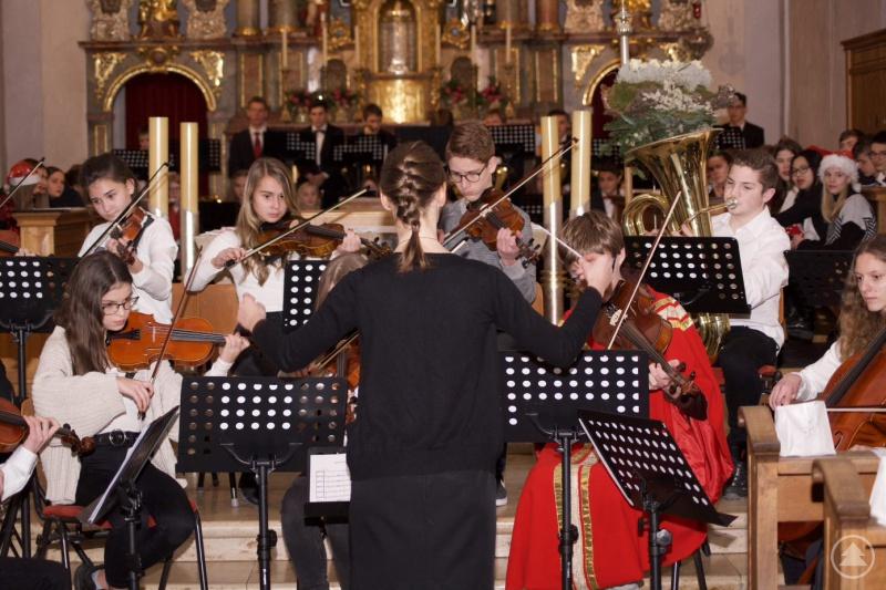 Das Orchester mit Carolin Freiss.