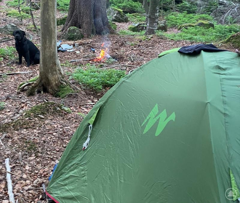 Viele Wildcamper schlagen ihr Zelt mitten in der Kernzone auf. Auch Lagerfeuer werden oftmals entzündet – ohne einen Gedanken an die Waldbrandgefahr zu verschwenden.