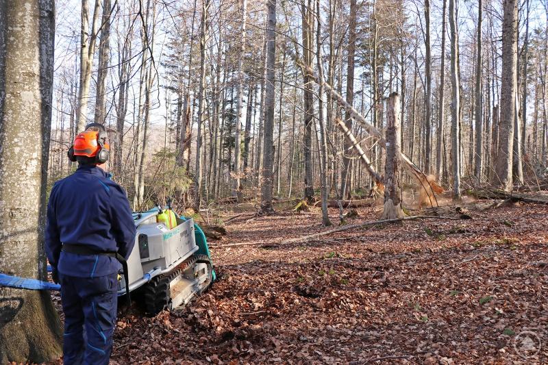 Bei der Verkehrssicherung kommt auch diese Forstraupe zum Einsatz, die ein gefahrloses Umziehen umsturzgefährdeter Baumstämme am Wegesrand erlaubt.