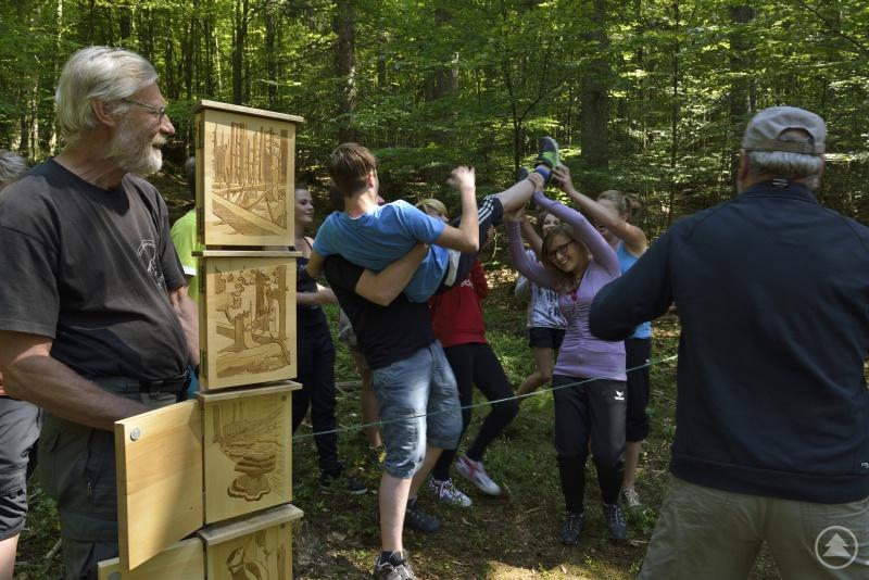 Mit der Waldentwicklung im Nationalpark haben sich die Schüler der Mittelschule Zwiesel bei einem Projekt beschäftigt.