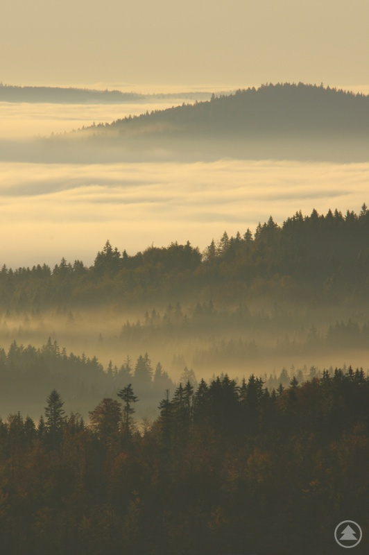Nationalpark Šumava hält oftmals mystische Stimmungen bereit
