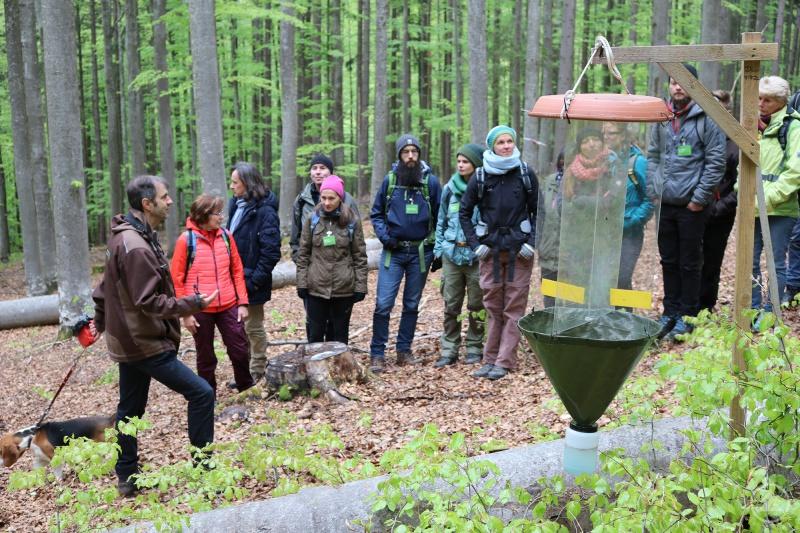 Während der Ausbildung lernt man viele Bereiche der Nationalparkverwaltung intensiv kennen – unter anderem auch die Forschungsarbeit im Schutzgebiet.