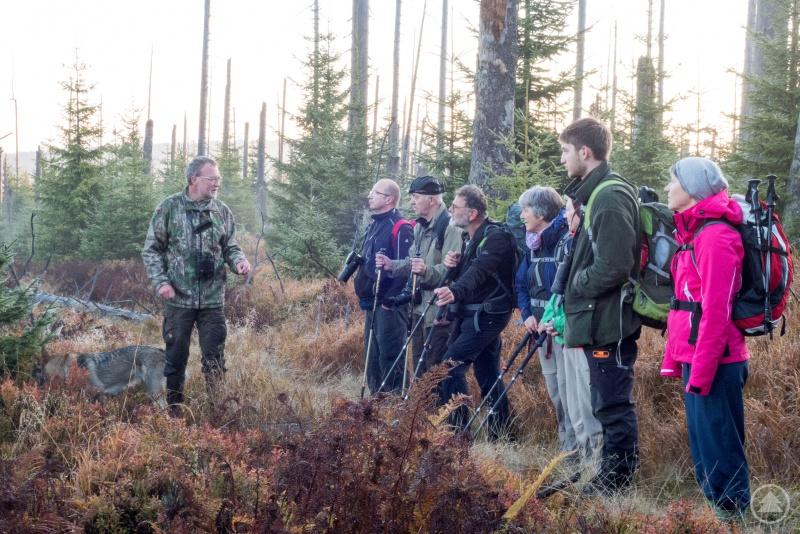 """Bei der mehrtägigen Wanderung """"Auf zur Hirschbrunft"""" werden die Teilnehmer ein Stück weit von Nationalparkförster Rainer Simonis (l.) begleitet."""