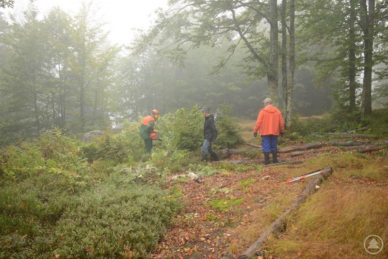 Über 70 Freiwillige kamen zum Aktions-Pflegetag, um den Bewuchs auf den Schachten mit Motorsägen und Gartenzangen zu entfernen.
