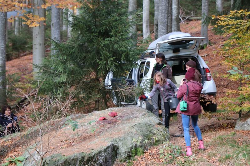 Zunächst legte Aylin das Futter für die Wölfe aus, danach konnte sie die Tiere aus nächster Nähe aus dem Auto heraus beobachten.