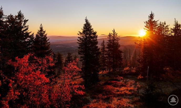 Leuchtend bunt präsentiert sich die Ferienregion Nationalpark Bayerischer Wald im Herbst seinen Urlaubsgästen